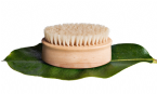 What is skin brushing